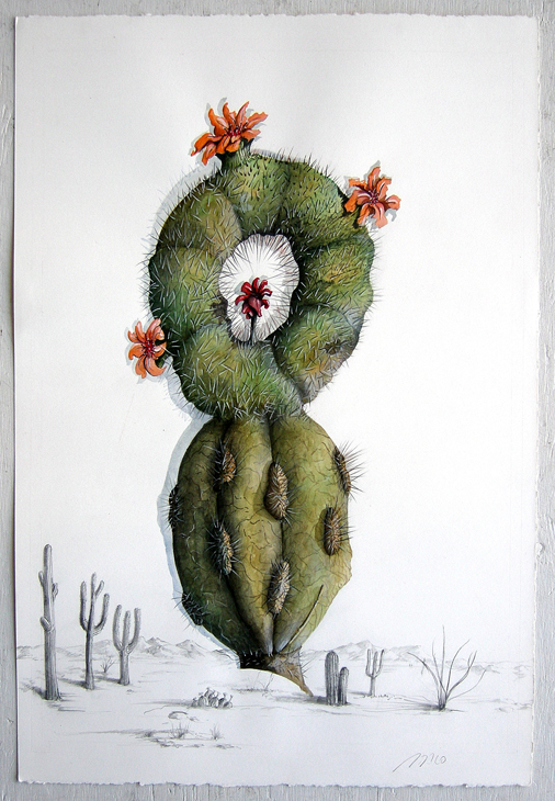 Artist: Vico Fabbris  Name: Cactophyllus Strabicus