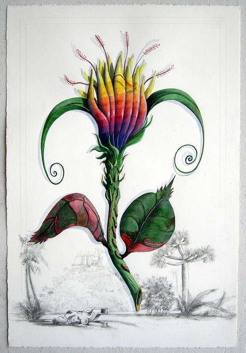 Artist: Vico Fabbris  Name: Fiore Del Paradiso