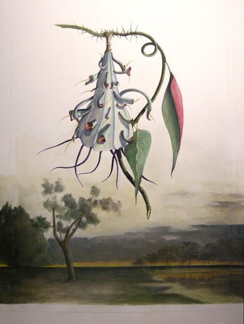 Artist: Vico Fabbris  Name: Saturnia Notturna