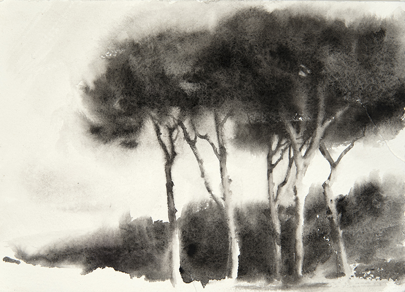"Artist: Wendy Artin  Title: Pine Profile Villa Pamphili Misty Black  Date: 2018  Size: 6.3"" x 9.5""  Method: Watercolor  Price:  Inquire"