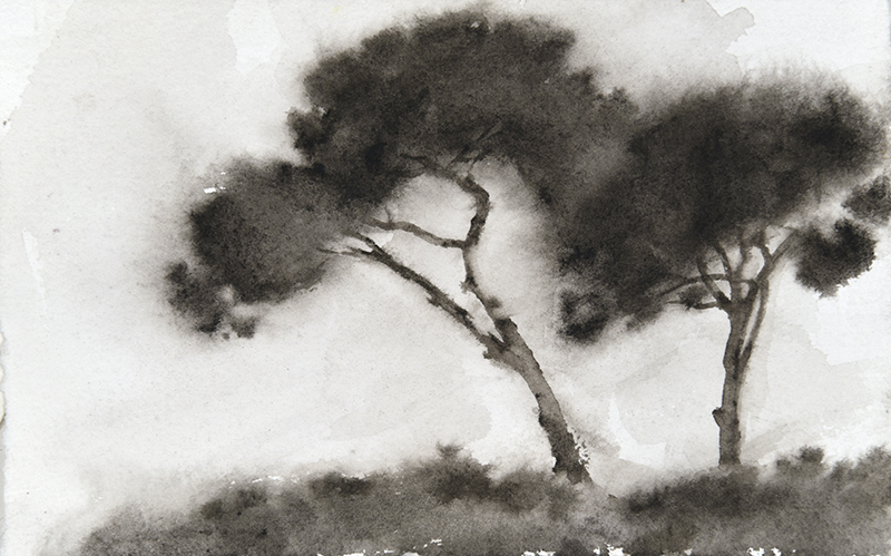 "Artist: Wendy Artin  Title: Two Tiny Pines Villa Pamphili   Date: 2018  Size: 4.3"" x 6.7""  Method: Watercolor  Price:  Inquire"