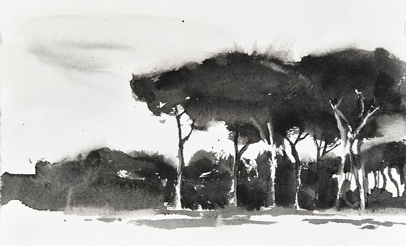 "Artist: Wendy Artin  Title: Small Black Edge of Pines Villa Pamphili  Date: 2018  Size: 4.3"" x 7""  Method: Watercolor  Price:  Inquire"
