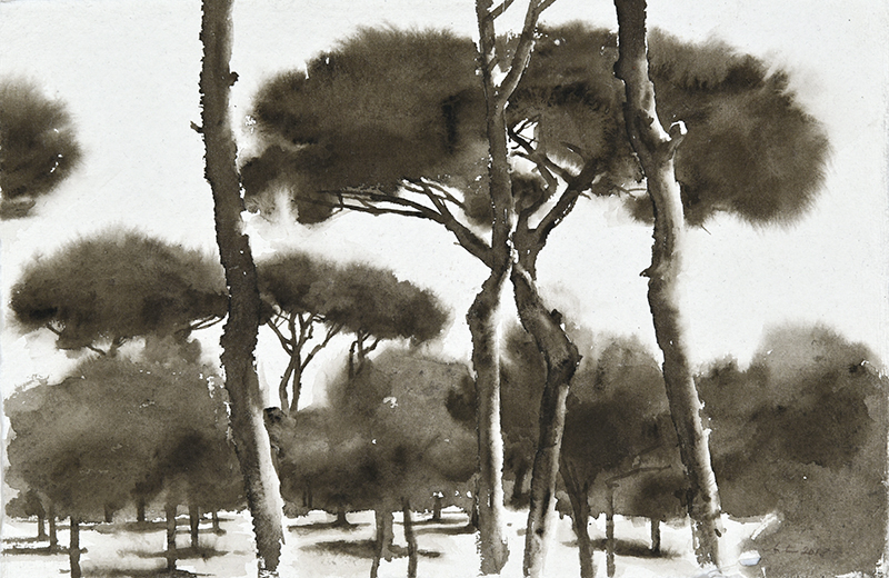 "Artist: Wendy Artin  Title: Pines Villa Pamphili  Date: 2018  Size: 7.9"" x 12.2""  Method: Watercolor  Price:  Inquire"