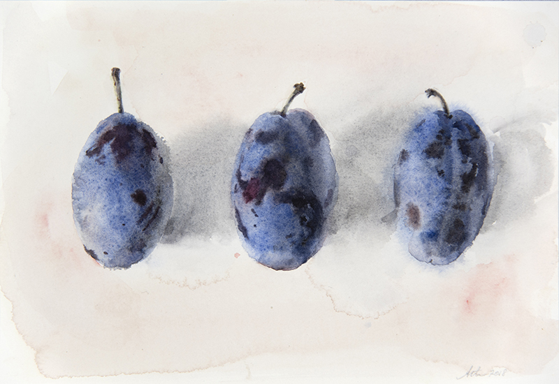 """Artist: Wendy Artin  Title: Three Plums  Date: 2017  Size: 6.7"""" x 10""""  Method: Watercolor  Price:  Inquire"""