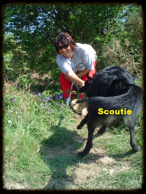 Scoutie and his big sticks!