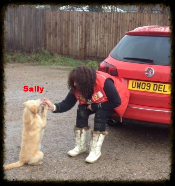 sally.jpg