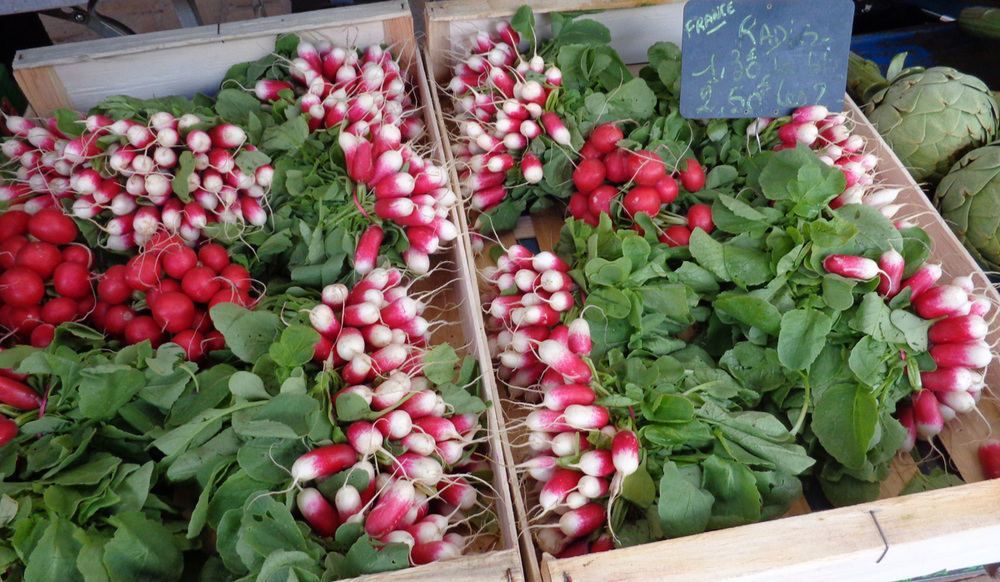 French Market Day radishes.jpg