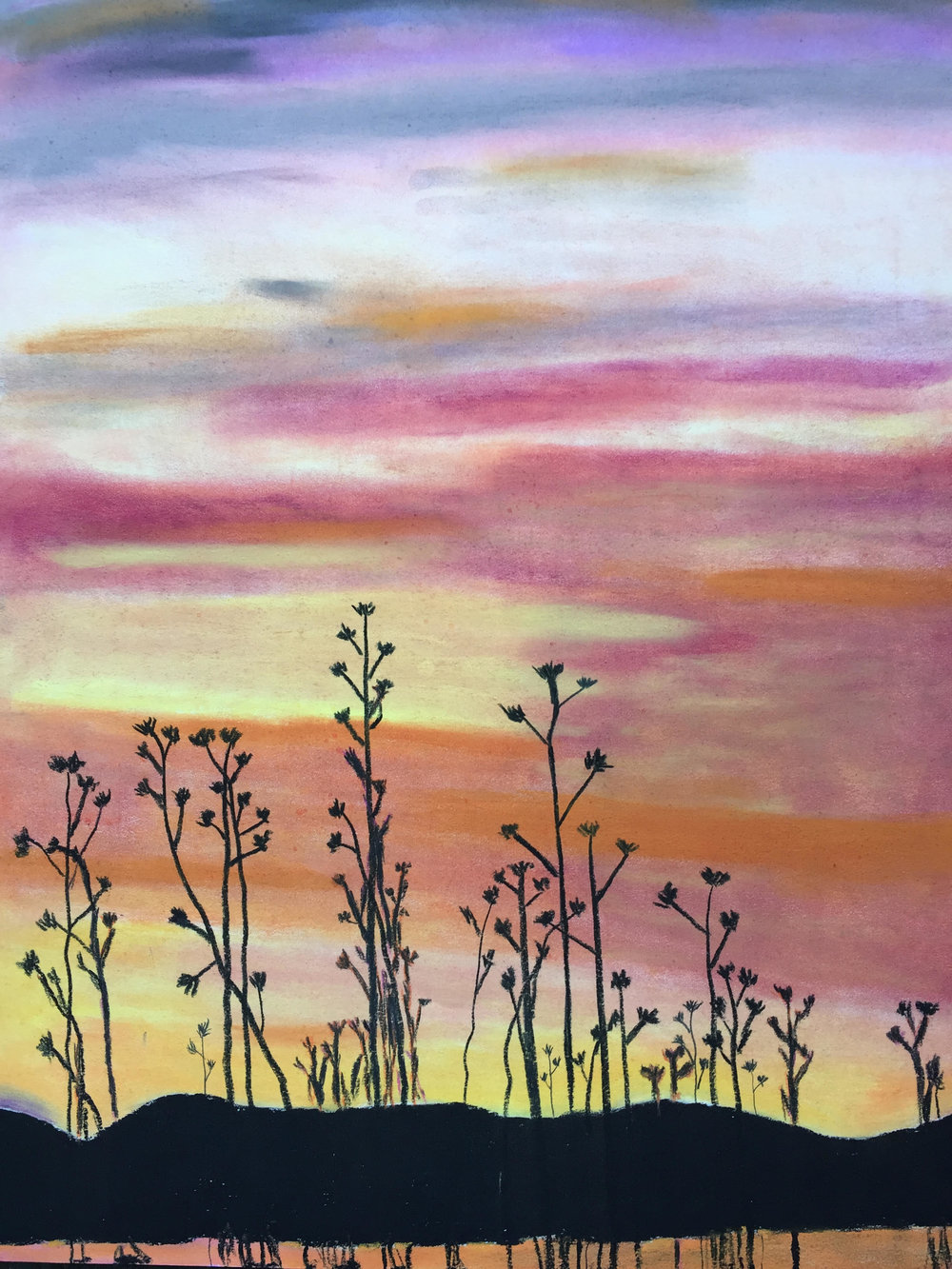 Weeds against the sunset.jpg