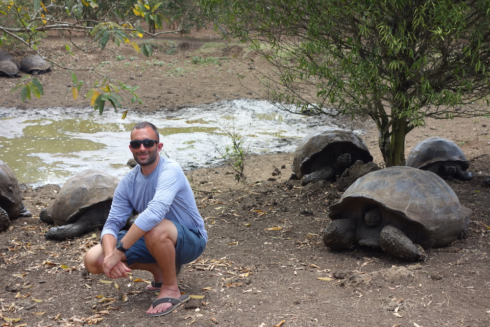 Chilling with giant tortoise (as one does)