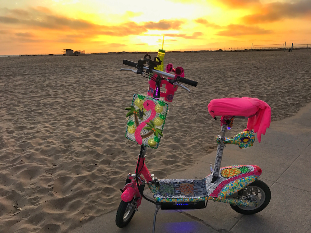 My flamingo and pineapple scoot scoot, designed by Good Vibe Gliders