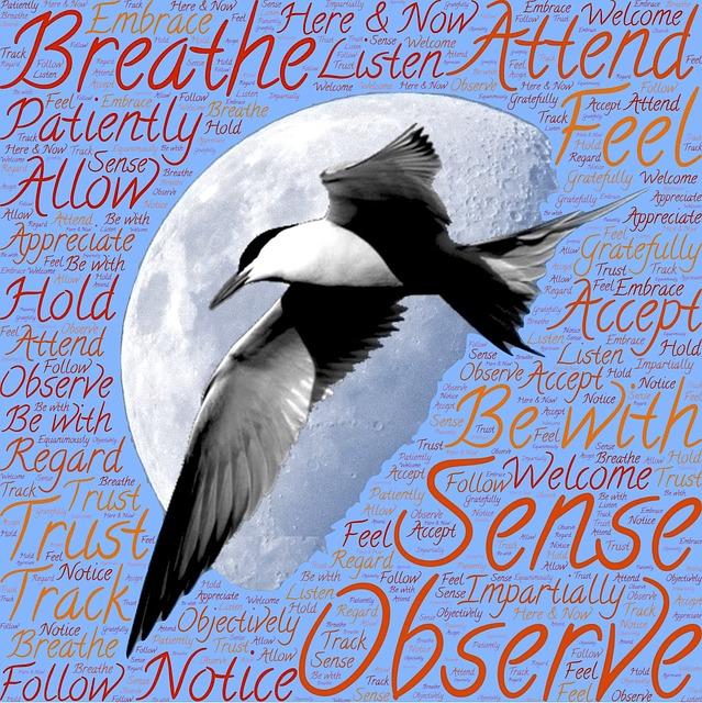 meditation-1023497_640.jpg