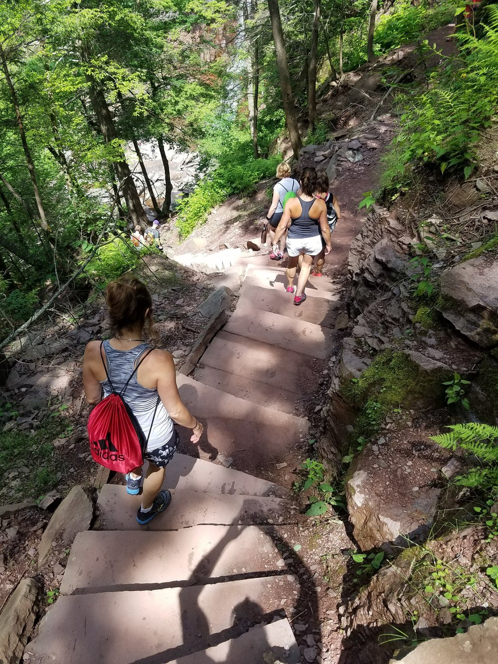 A few of our guests walking down the trail to the beautiful Kaaterskill Falls.  We stopped along the way to take in the breathtaking views, snap a few photos and enjoy the chill vibes that nature provides.