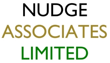 nudge associates limited