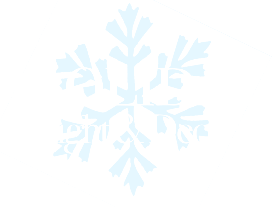 Holiday Light & Decor