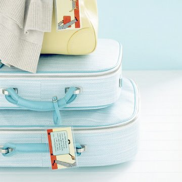 luggage_martha-stewart1.jpg