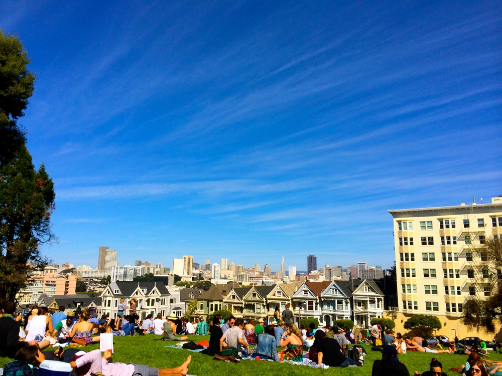 Painted Ladies/Alamo Square Park