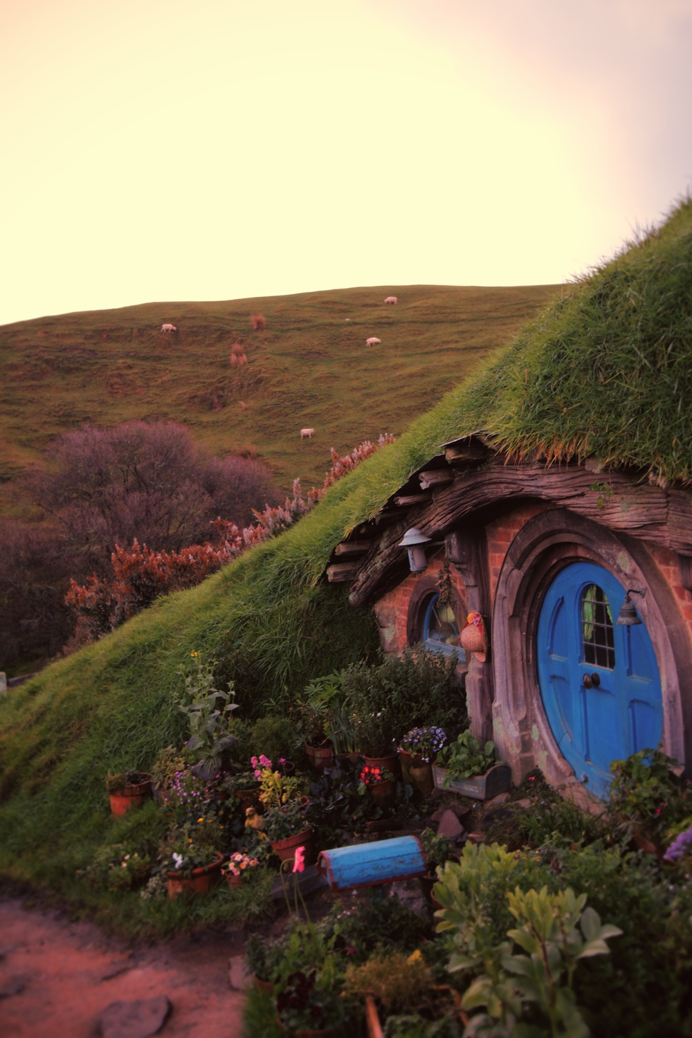 Hobbiton Evening Dinner Tours - A Night at The Shire