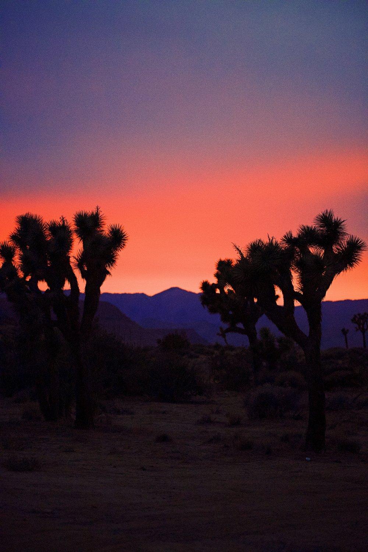 IMG_7610_x sunset.jpg