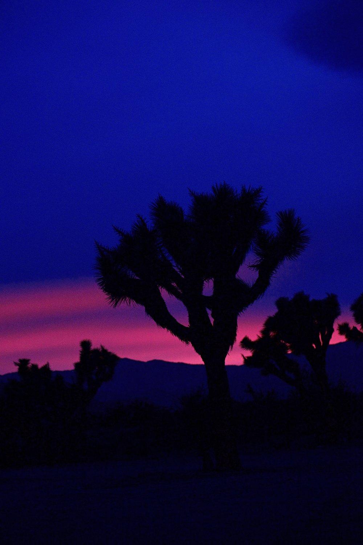 IMG_7577_x sunset.jpg