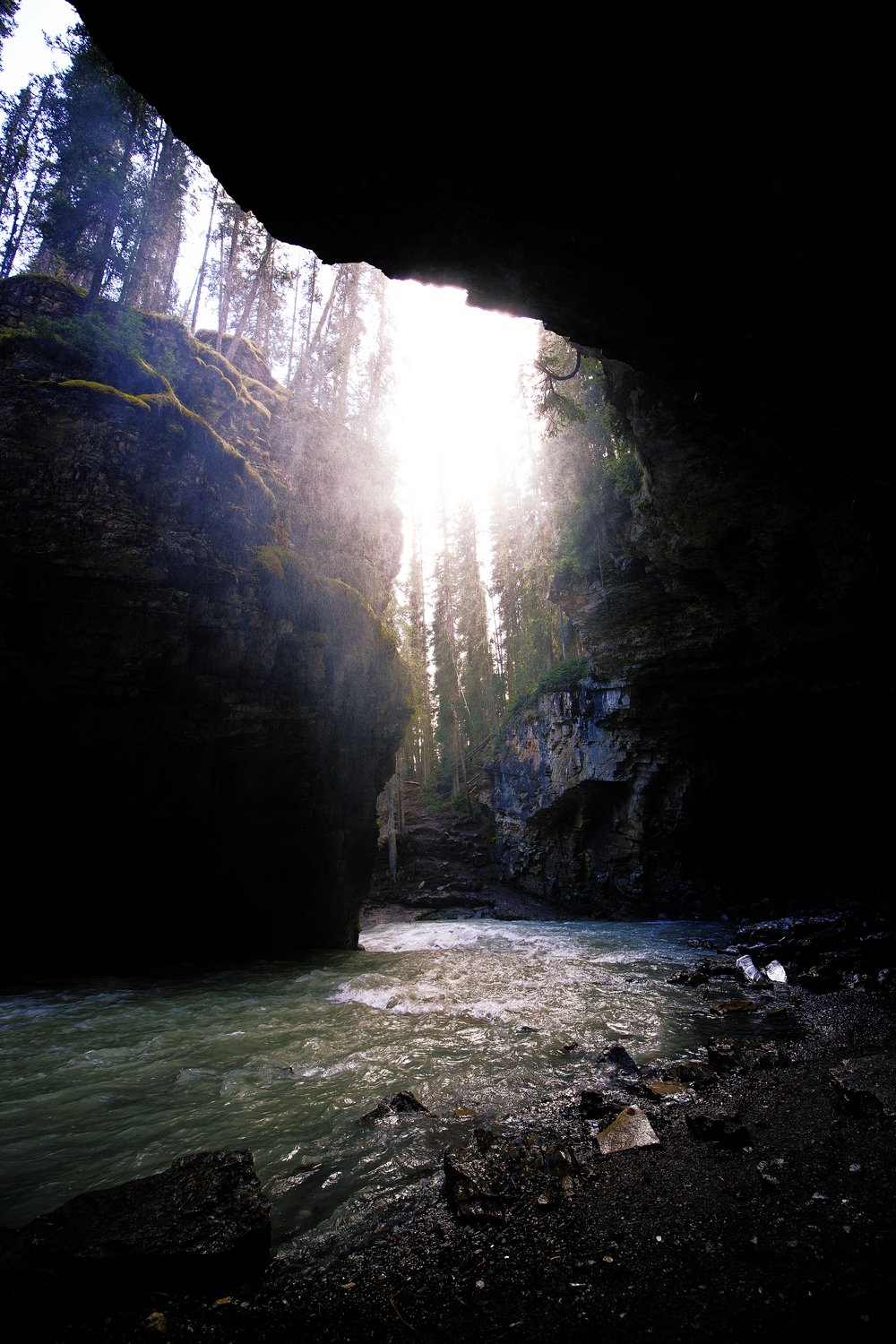 View of Path from the Inside of Cave