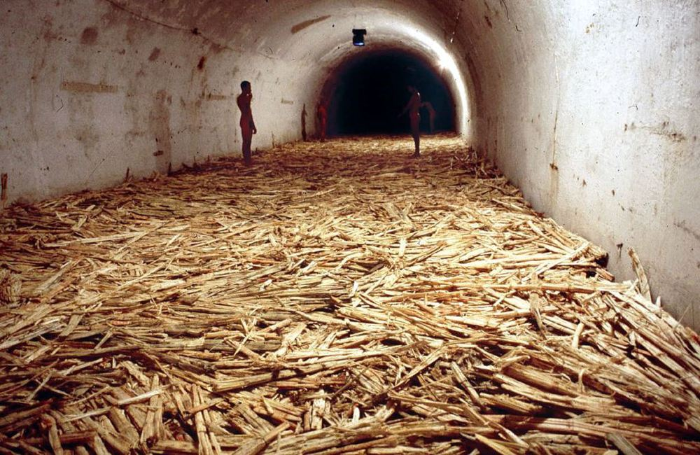 "Tania Bruguera, ""Untitled (Havana)"" (2000)"