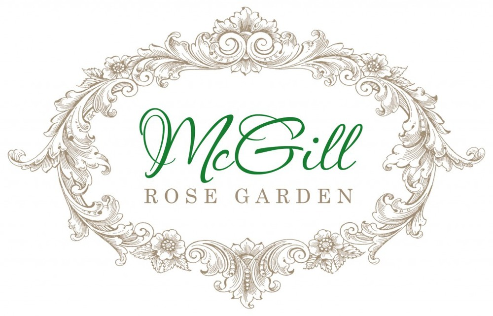 Click on the logo to watch a video of past events in the garden.