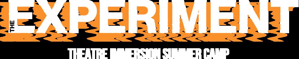2019 Experiment Logo.png