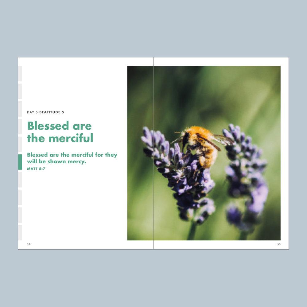 CommissionBooklet3.jpg