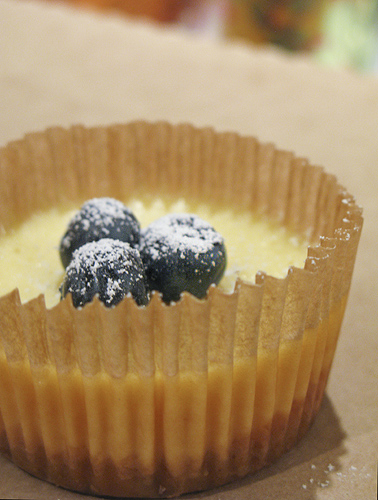 Cheesecake Cupcakes with Blueberry