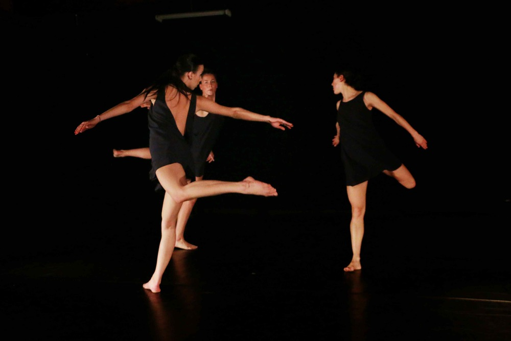 Photo of Warehaus Dance Collective in VITA by Marra Austin