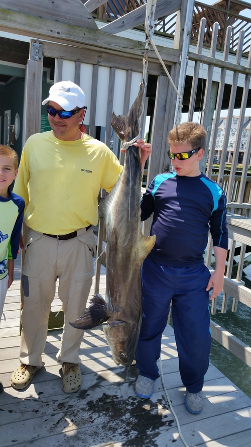 Charleston Fishing Charters In Shore Near Shore And Deep