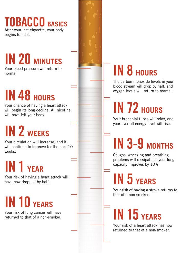 tobacco_basics.jpg