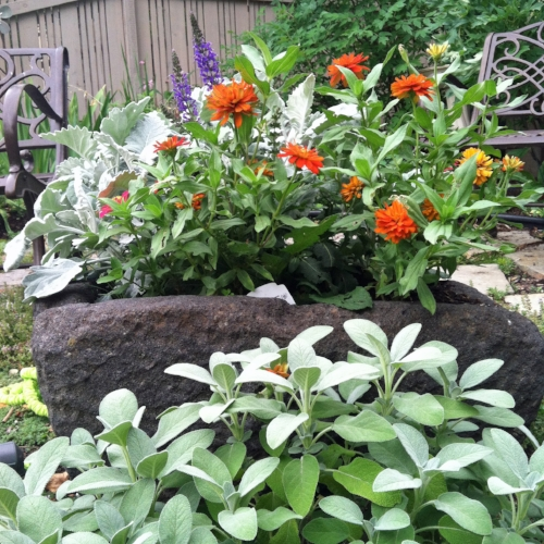 lava rock planting container from Java in Missoula garden