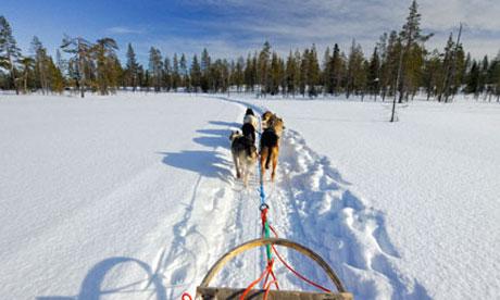 Dog-sledding-across-snows-007.jpg