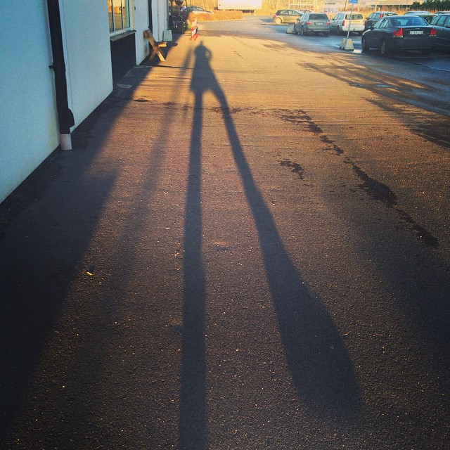 I'm 15m long #nordic #shadow