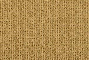 Masland Carpet    Bandala