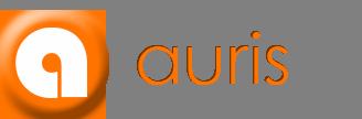 auris-banner-3
