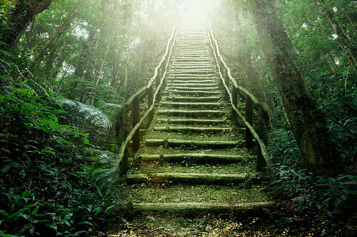 #explorationsundays  (part 2 of 2)   If there was ever a real stairway to heaven, I'm pretty sure this what it would look like