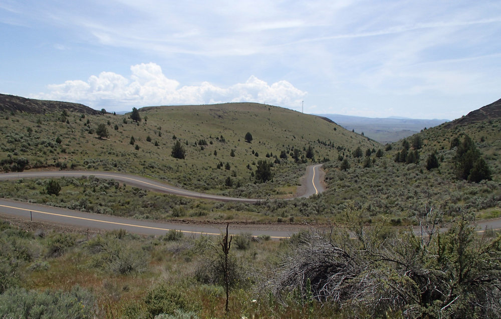 The climb to Shaniko... hot and no breeze, made this climb seem longer than it was
