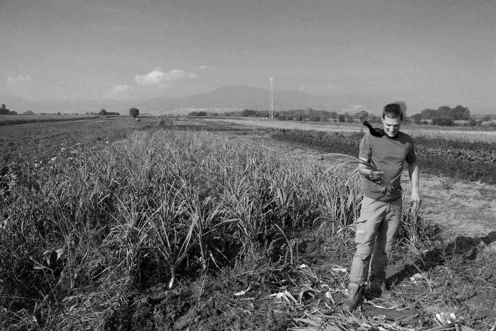 Pierre-Henri: dapper, multilingual vegetable farmer