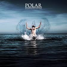 Polar Shadowed Album Cover.jpg