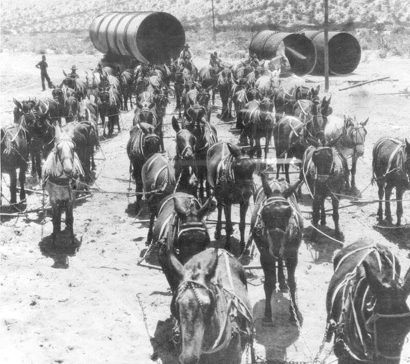 52 Mule Team helping build the Los Angeles aqueduct, 1912. Source: Waterandpower.org