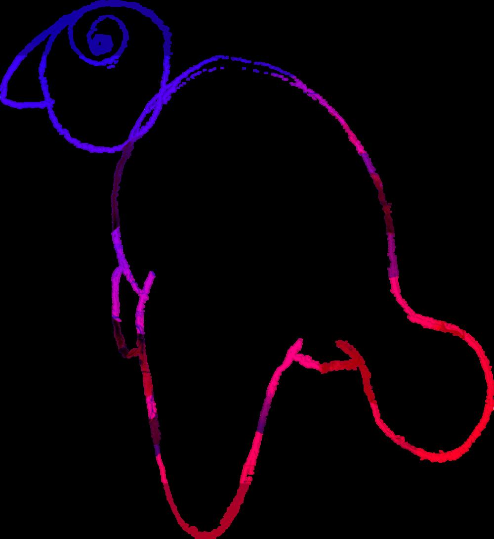 dumbbird viii vector_1@1x@3x.png