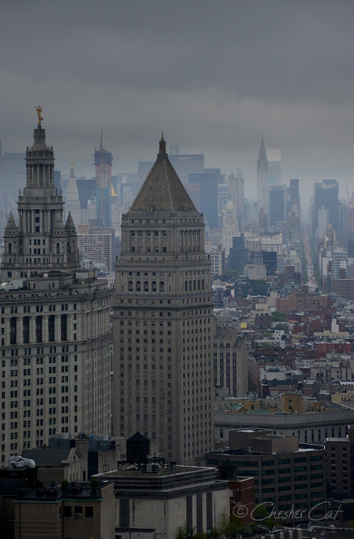 Gotham_5931.jpg