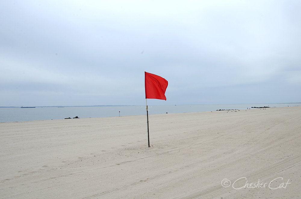 Red Flag, 2018   Shot on Nikon D7000 05/05/2018 Posted 05/05/2018