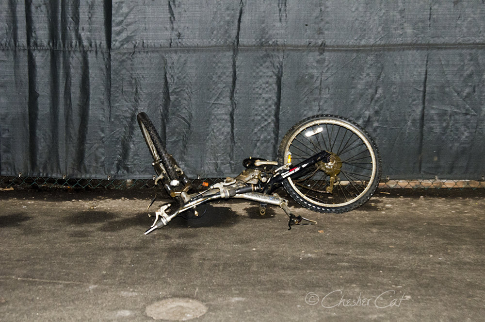 Bicycle Dead, 2018   Shot on Nikon D7000 02/19/18 Posted 07/11/2018