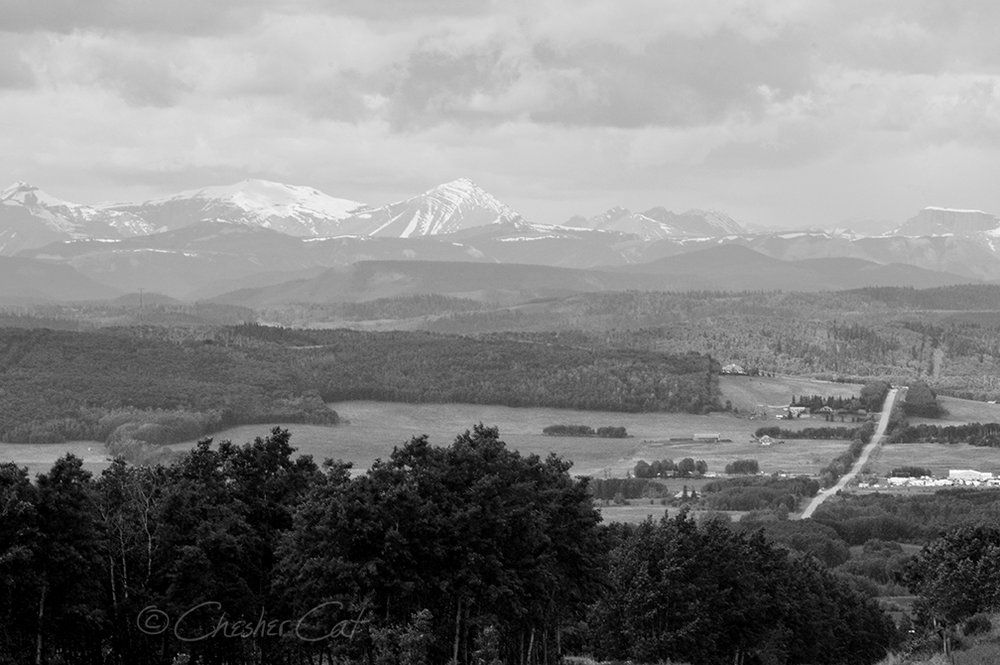 Rocky Mountains, 2012   Shot on Nikon D300 6/14/12 Posted 08/10/2018