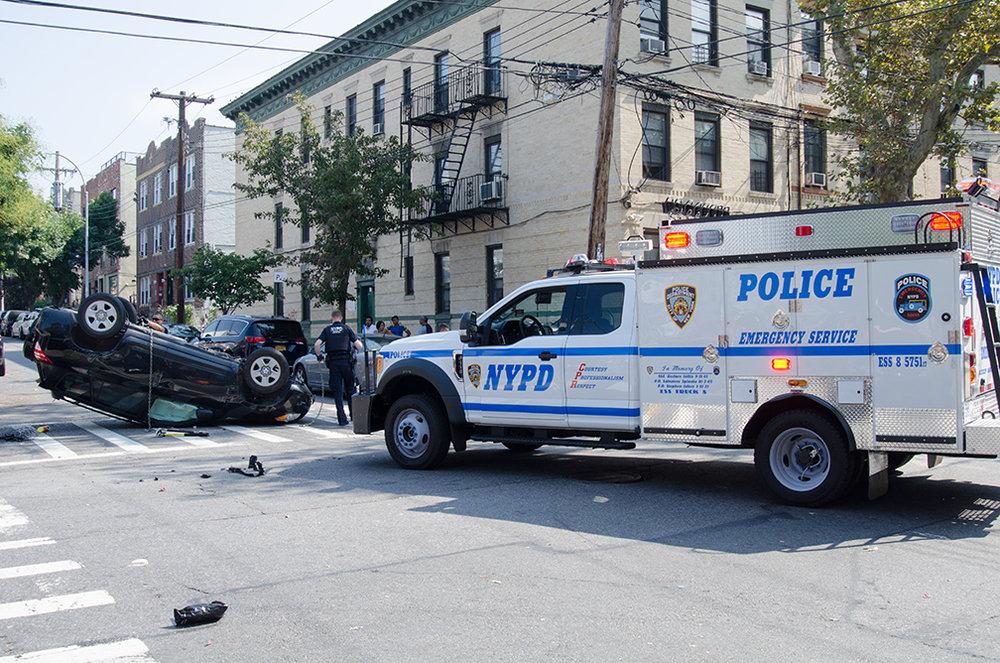 ChesherCat_NYPD_2629