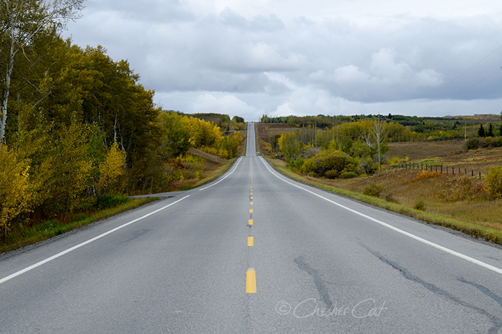Country Road, 2018 Shot on Nikon D7000 09/29/18 Posted 09/30/18