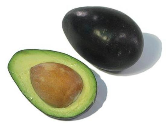 brogdon-avocado-fruit.jpg